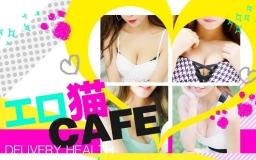 エロ猫CAFE