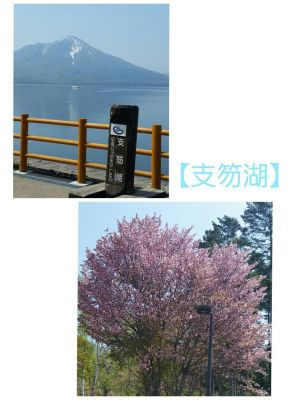 【支笏湖】by.さやか