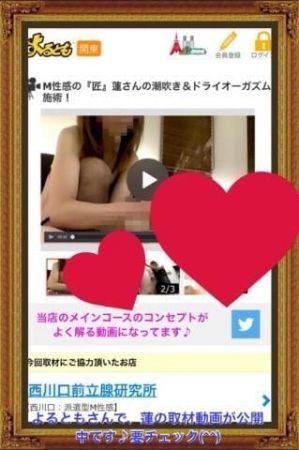 蓮の取材動画、3回目はよるともにて公開中です♪良かったら、よるともの動画も見て下さい(^^)