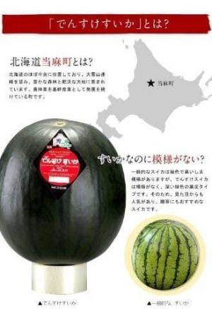 [お題]from:酒王さん