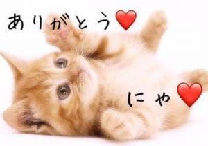 今日のお礼<img class=&quot;emojione&quot; alt=&quot;❤️&quot; title=&quot;:heart:&quot; src=&quot;https://fuzoku.jp/assets/img/emojione/2764.png&quot;/>