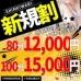 Pony Tail SPA 谷九店