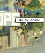 ひょっこり(^3^)/