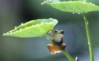 雨はあがりましたね(^^)