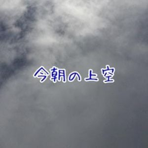 朝matsui