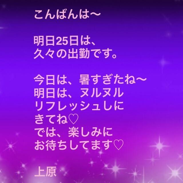 こんばんワンU^ェ^U