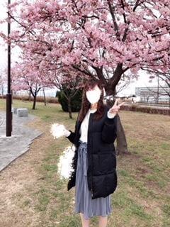 河津桜<img class=&quot;emojione&quot; alt=&quot;🌸&quot; title=&quot;:cherry_blossom:&quot; src=&quot;https://fuzoku.jp/assets/img/emojione/1f338.png&quot;/>
