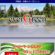 エバーグリーン
