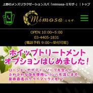Mimosa~ミモザ
