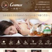 Cosmos~秋桜~