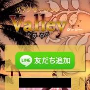 Valley(ヴァリー)