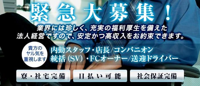 美女Cafe「カフェ」の男性高収入求人