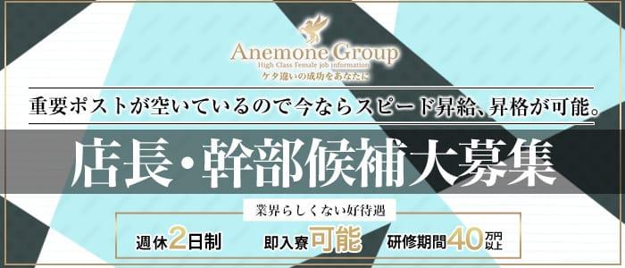 アネモネ Anemone 渋谷の男性高収入求人