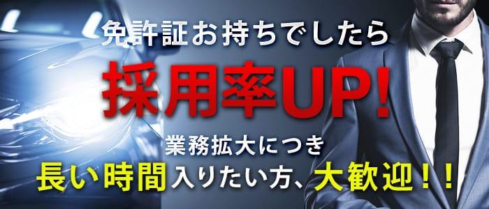 Secret Girl 大阪の男性高収入求人