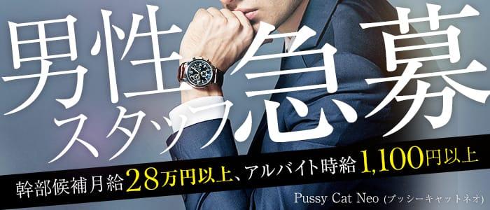 Pussy Cat Neo(プッシーキャットネオ)の男性高収入求人