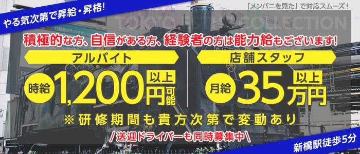 東京エステコレクションの男性高収入求人