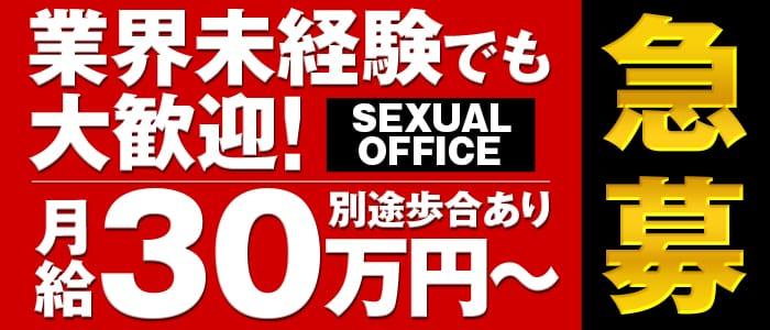 Sexual Officeの男性高収入求人