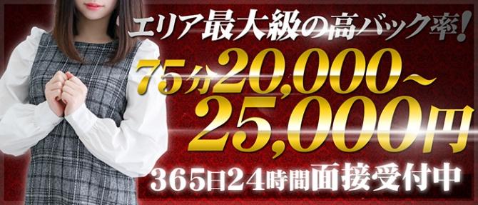 ホワイトベル渋谷のぽっちゃり求人画像