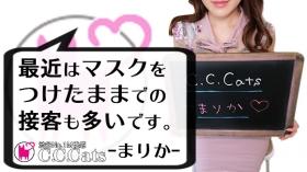 C.C.Cats(シーシーキャッツ)