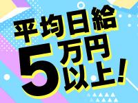 平均日給5万円以上!