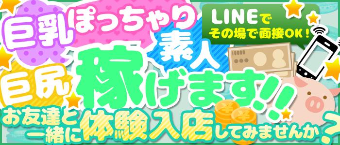 体験入店・ぽちゃカワ専門店 マシュマロ