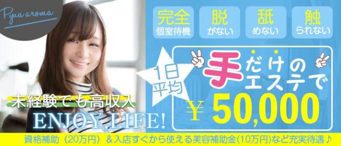 ピュアアロマ神戸のぽっちゃり求人画像