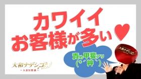 大和ナデシコ~人妻M性感~の求人動画