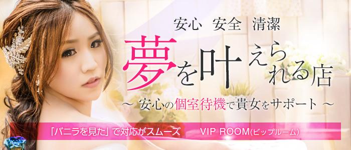 VIP ROOM(ビップルーム)