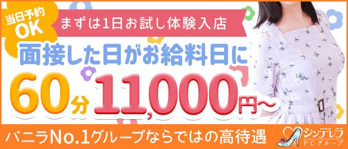 新宿シンデレラの体験入店求人画像