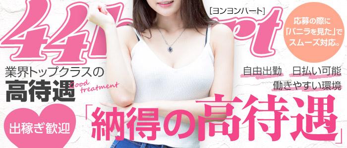 44 heart ~ヨンヨンハート~の出稼ぎ求人画像