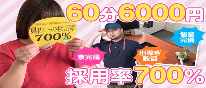 ぽっちゃりチャンネル 新潟店の求人画像