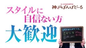 神戸ぽんぱどーるの求人動画