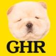 GHR(ジーエイチアール)の面接官