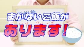 リアルフルーちゅ西船橋の求人動画
