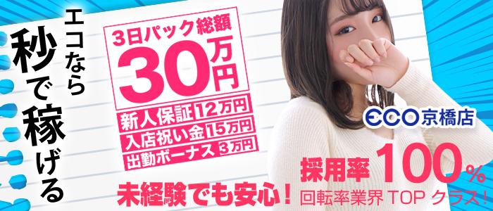 スピードエコ 京橋店の未経験求人画像