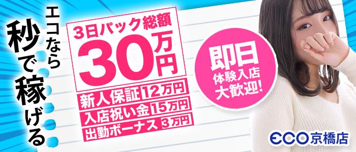 スピードエコ 京橋店の体験入店求人画像