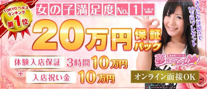 錦糸町夢見る乙女の体験入店求人画像
