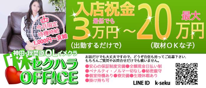 人妻・熟女・セクハラOFFICE 神田店
