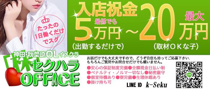 体験入店・セクハラOFFICE 神田店
