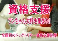 沖縄人妻concierge