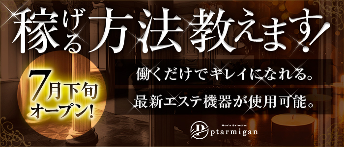 Ptarmigan~ターミガン~の未経験求人画像