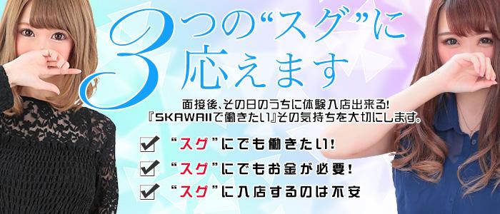体験入店・Skawaii(エスカワ)日本橋店