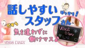 VENUS Diaryに在籍する女の子のお仕事紹介動画