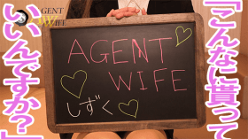 AGENT WIFEの求人動画