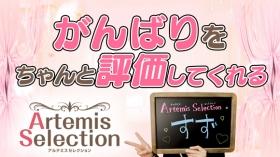 ArtemisSelection