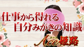 Aceの求人動画