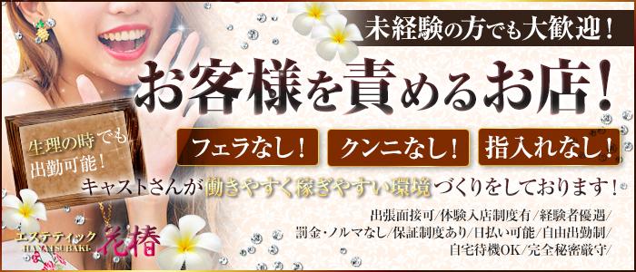 エステティック花椿 盛岡店の求人画像