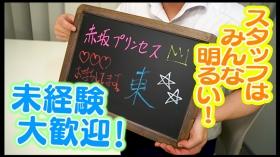 赤坂プリンセスのスタッフによるお仕事紹介動画