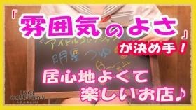 アイドルコレクションのバニキシャ(女の子)動画