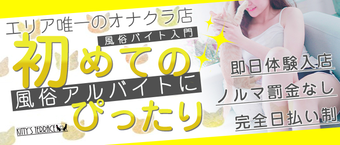 キティーズテラス東京本店の求人画像